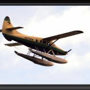DSC_6712_2 - Pontoon Plane Coming in to Land in Alaska Bay